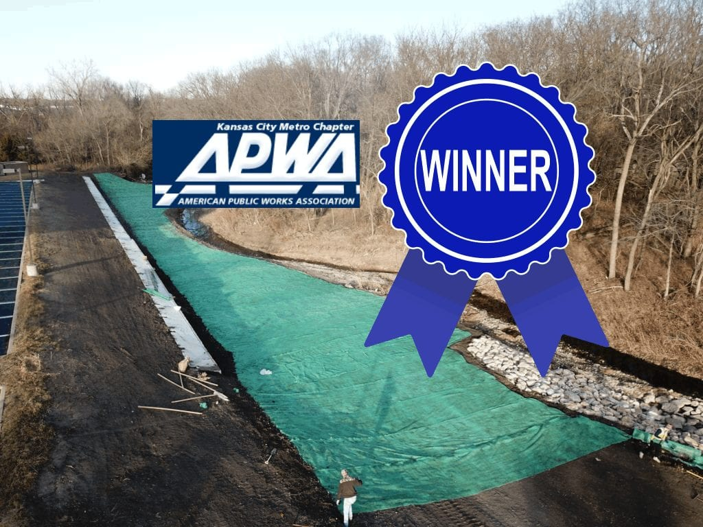 Public Works Project of the Year